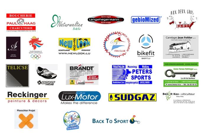 web sponsor 2016
